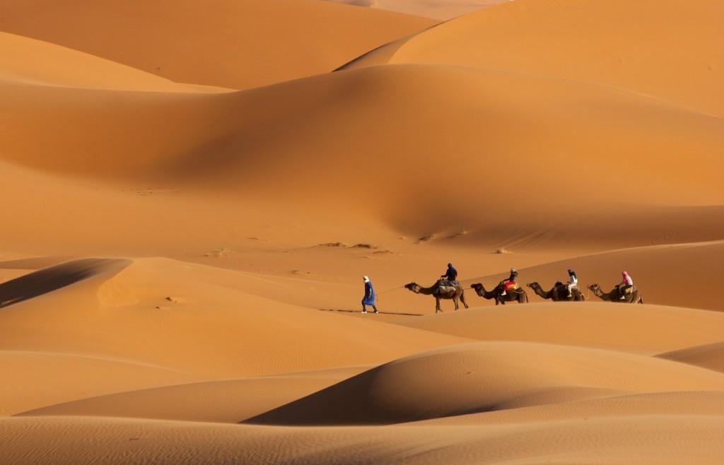 Excursión con camellos en las dunas