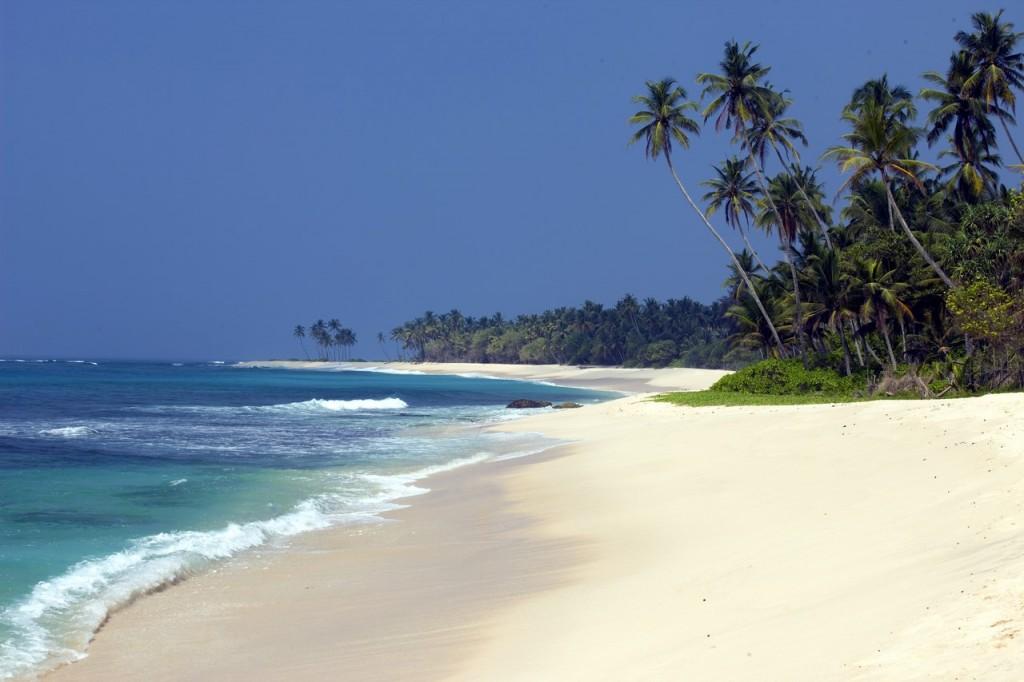 Las aguas cristalinas y las palmeras son las grandes protagonistas de las playas de Sri Lanka (Copiar)