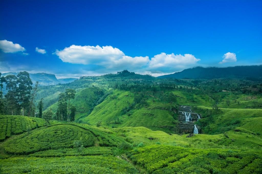 Descubre la magia de Sri Lanka