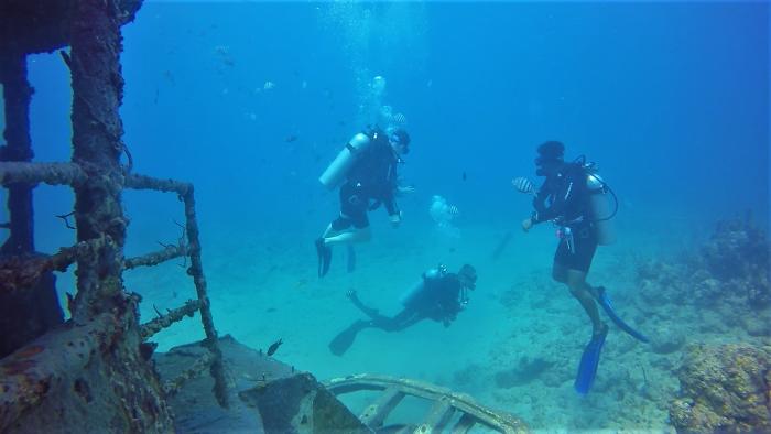 Verpassen Sie auf keinen Fall die faszinierende Unterwasserwelt der Dominikanischen Republik mit RIU