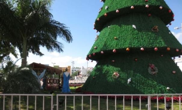 Visita el árbol de navidad de Andador de Solidaridad