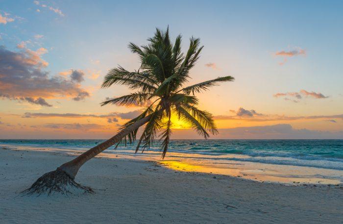 Disfruta del amanecer en Playa del Carmen con RIU