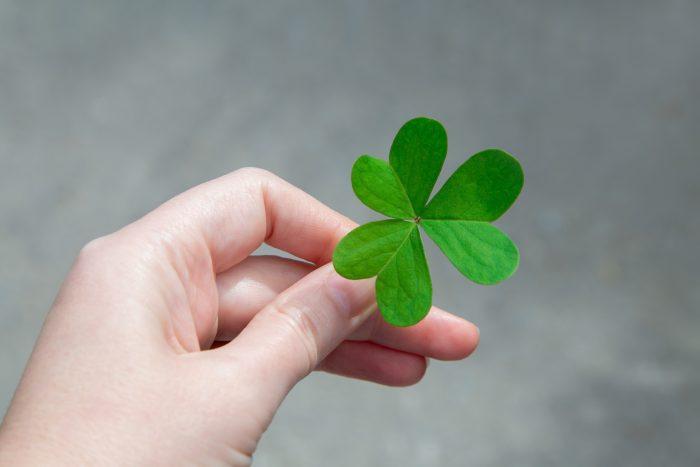 Durante esta festividad es propio ver el clásico símbolo irlandés: el trébol de tres hojas.