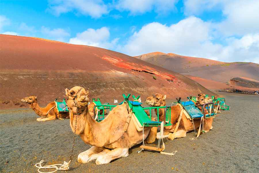 All Inclusive Hotels In Lanzarote