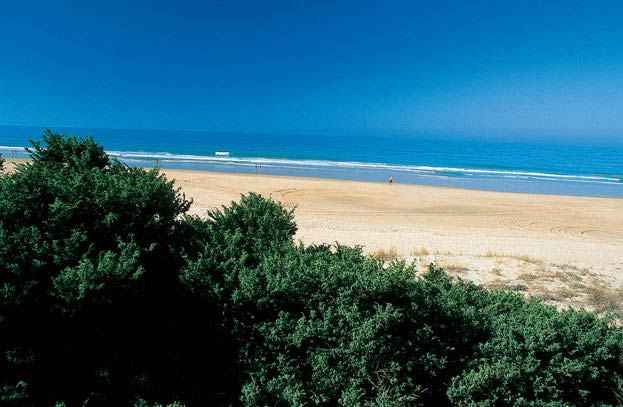 Chiclana - Playa